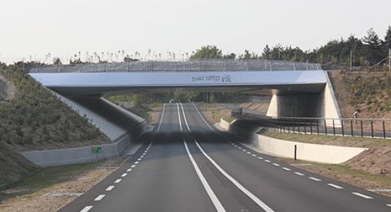 Ecoduct